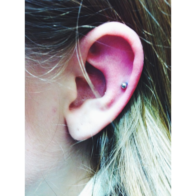 Mid Ear Cartilage Piercing
