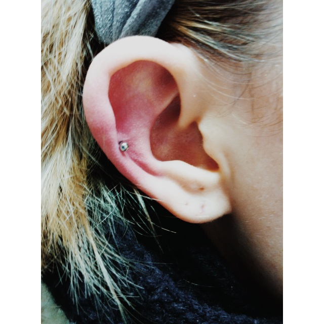 Mid Ear Cartilage Piercing I