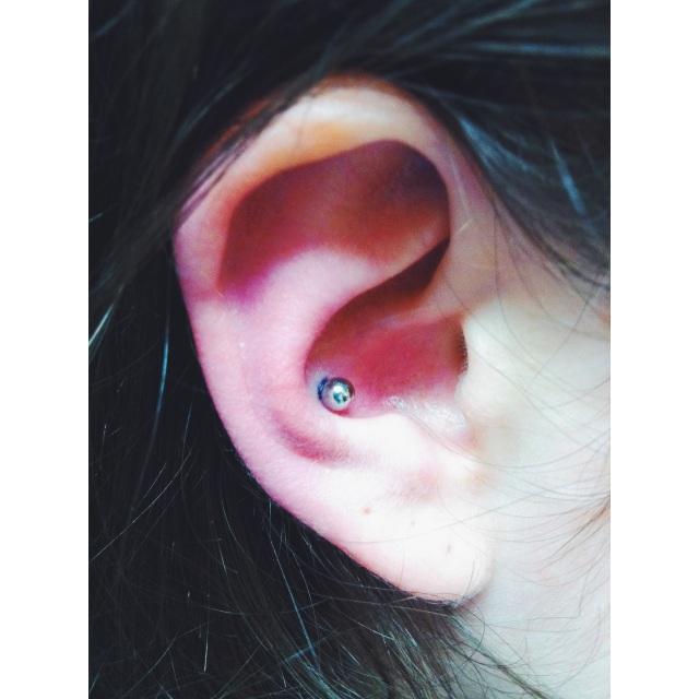 Rose's Conch Pierced