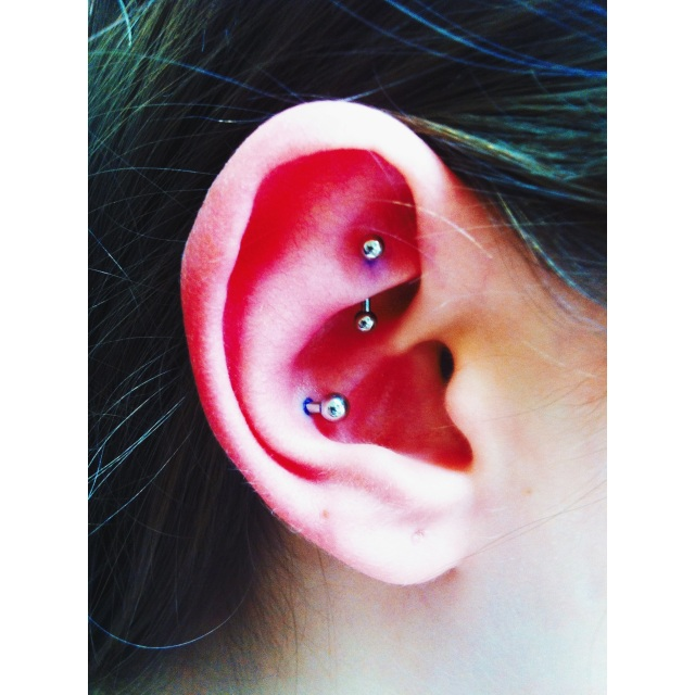 Jade's Rook & Conch Double Piercings
