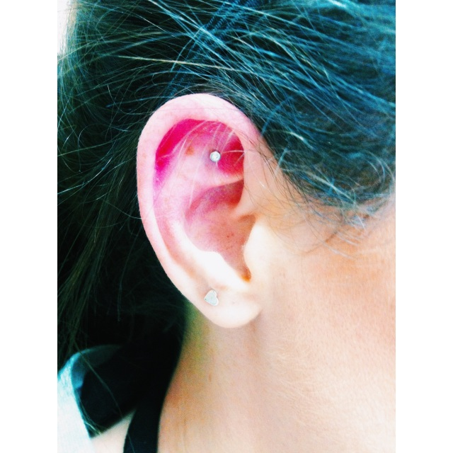 Holly's Horizontal Rook/Cartilage Piercing