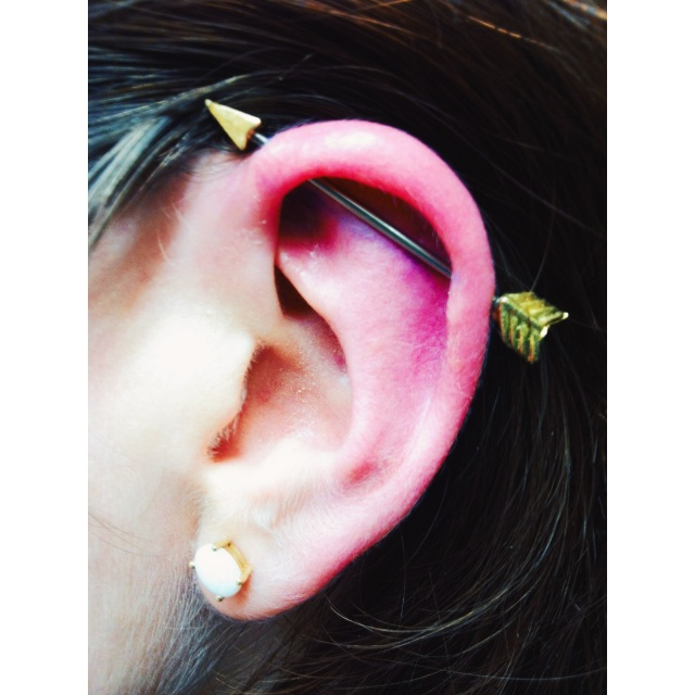 Pauline's Arrow Scaffold Piercing