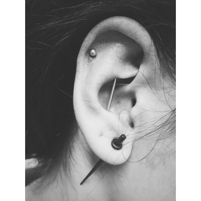Layla's Vertical Scaffold Piercing II also known as a Suicide Industrial Piercing
