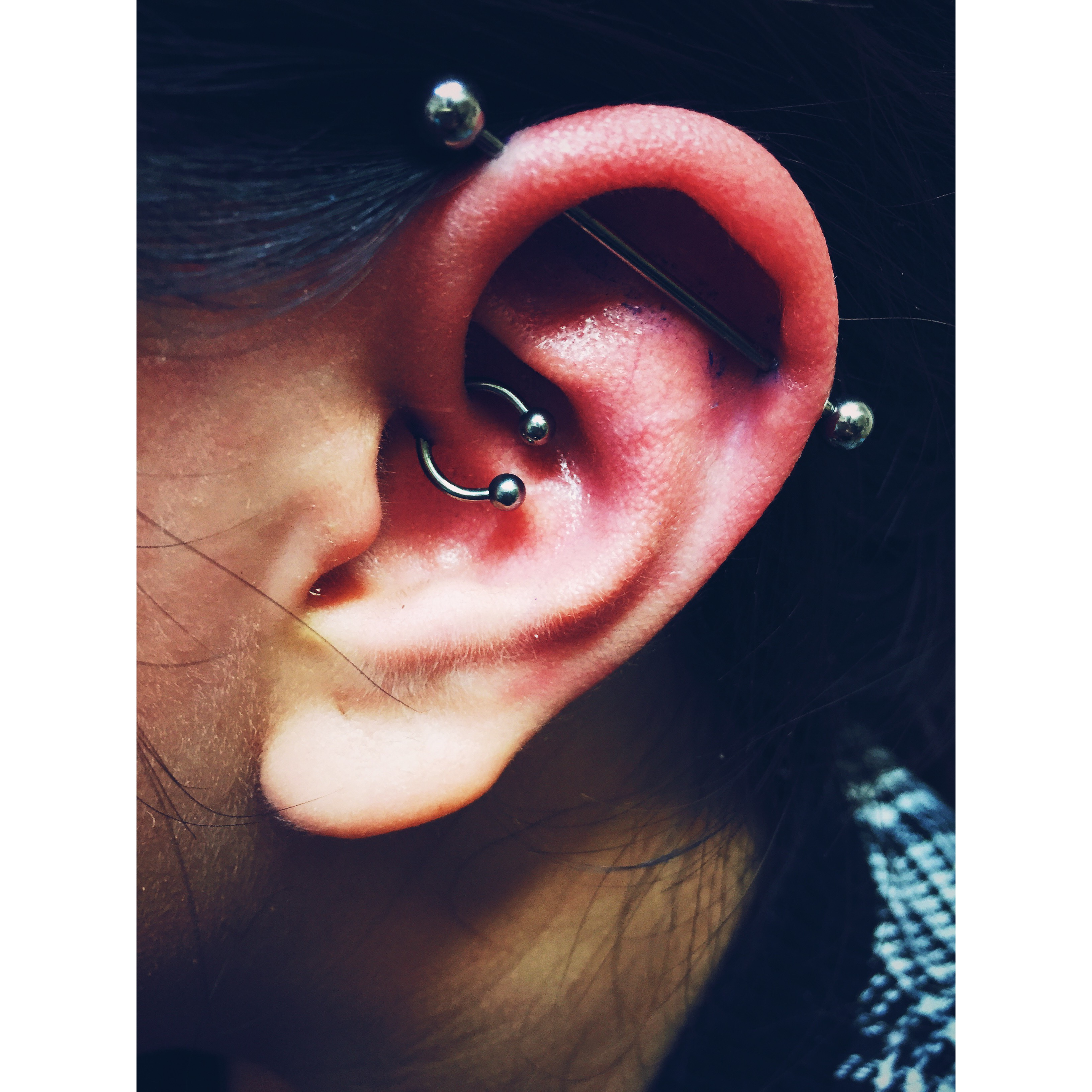 Ann's Daith & Scaffold Piercings